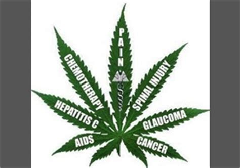Legalization of Marijuana Essay Sample - JetWriters